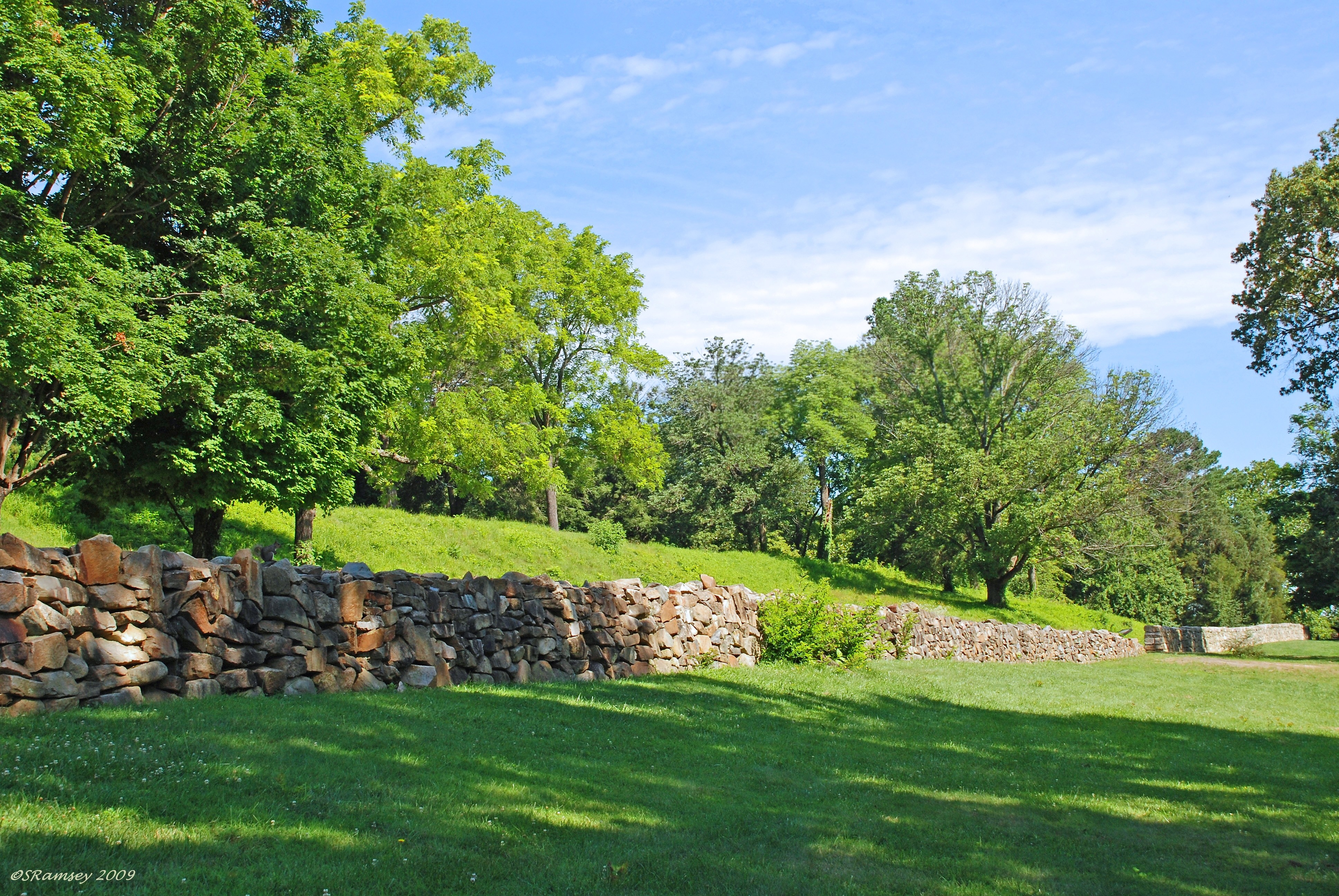 Sunken Road II Long view of wall with squirrel
